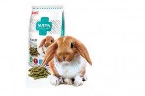 Krmivo králik