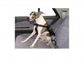 Bezpečnostný pás